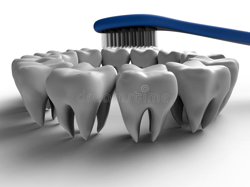 Brush tooth circular concept stock illustration