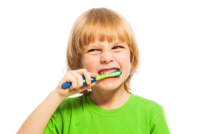 Download Brush your teeth stock photo. Image of dental, cheerful - 38747882