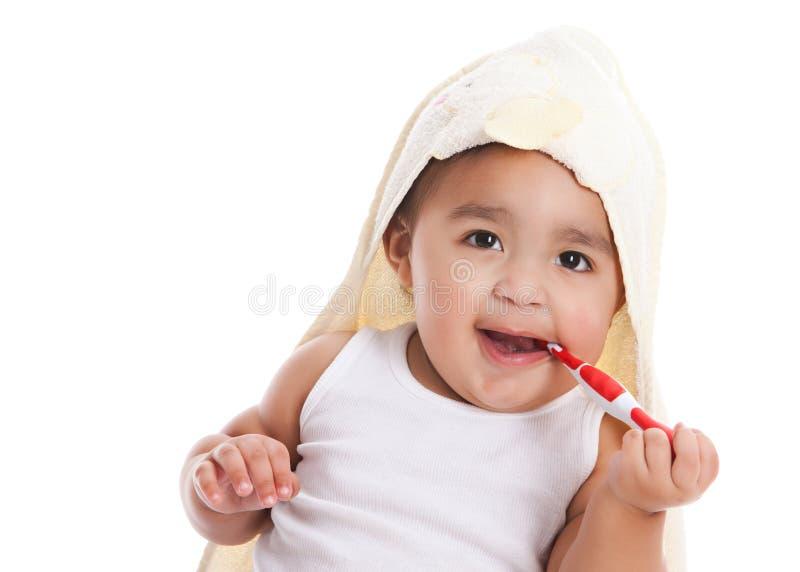 brushing teeth royaltyfri fotografi