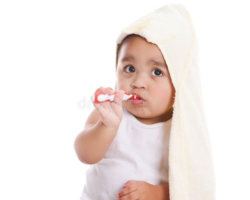 brushing teeth royaltyfri bild