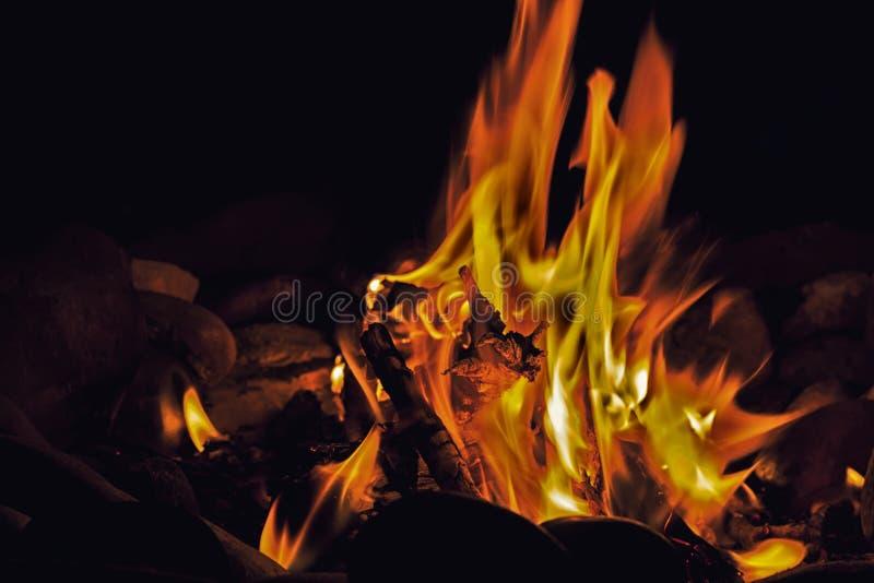 brushwood νύχτα αποτέφρωσης πυρών προσκόπων στοκ φωτογραφία με δικαίωμα ελεύθερης χρήσης
