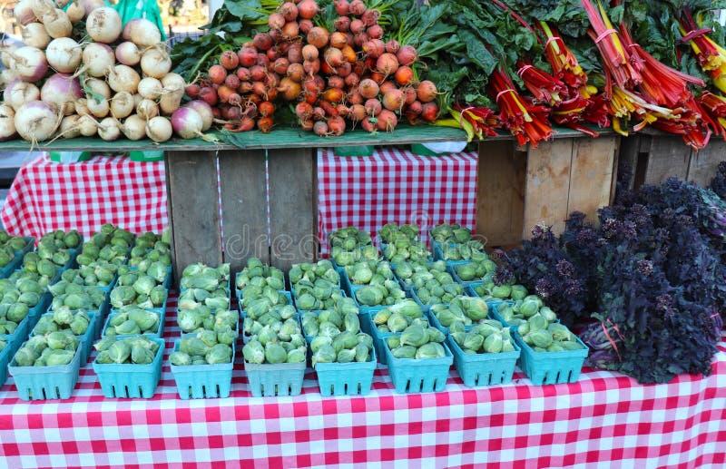 Brussel - groddar, den schweiziska charden sammanfogar andra grönsaker på bondens marknad royaltyfri bild