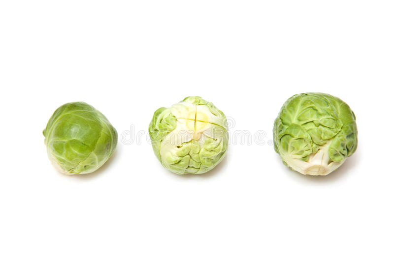 Brussel Sprouts. Isolated on white royalty free stock photography