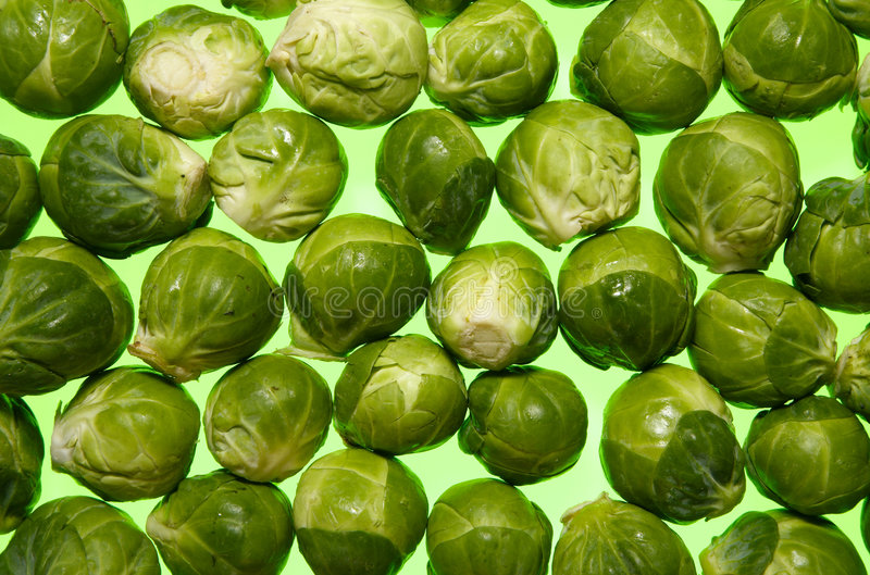 Brussel sprouts. Brussel sprouts, a vegetable traditionally used on Christmas day stock photos