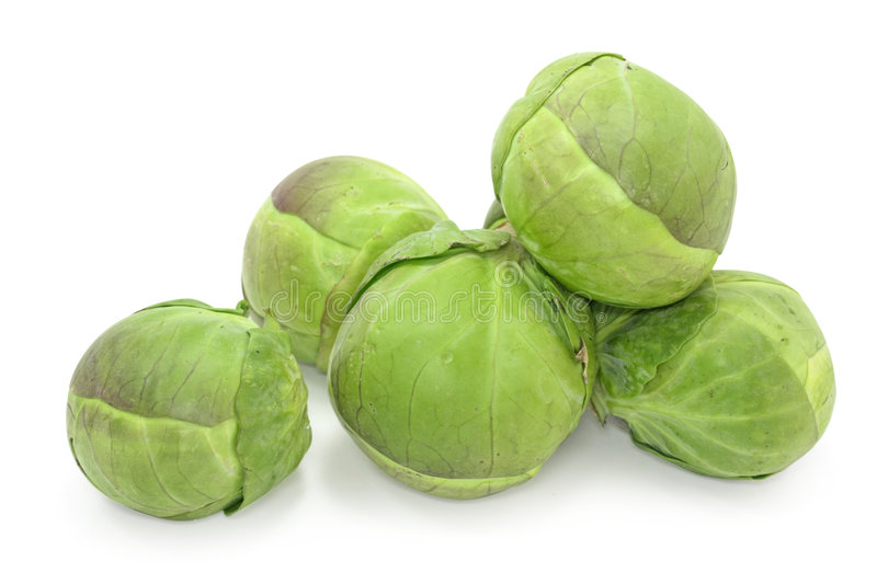 Brussel sprouts cabbage. On white background stock image
