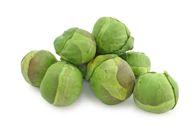 Brussel sprouts cabbage. Isolated on white background royalty free stock photos