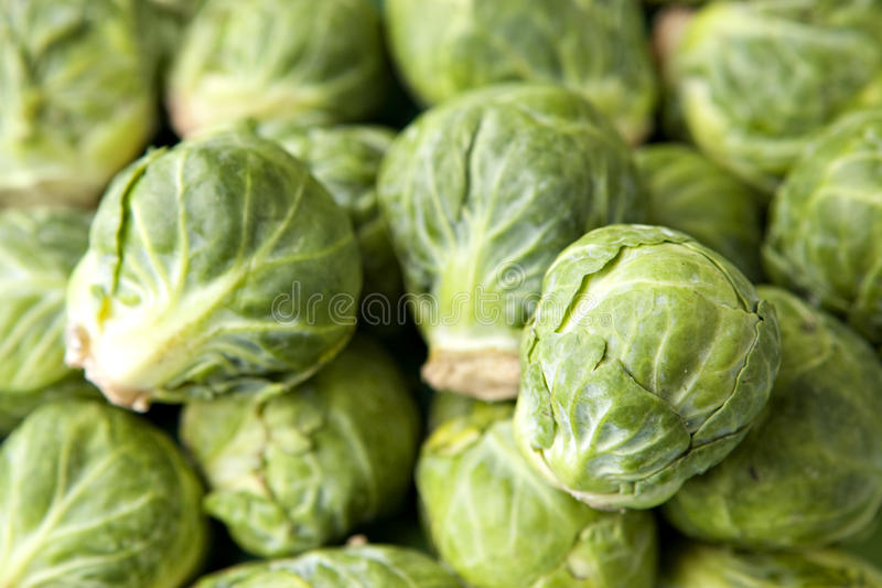 Brussel Sprouts in Pile. With two sprouts in sharp focus stock images