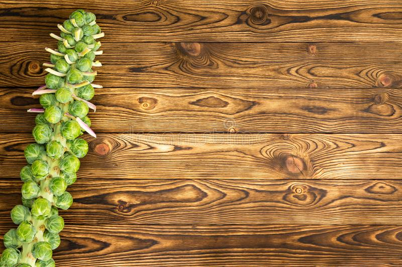 Brussel sprouts stalk on rustic market table royalty free stock images