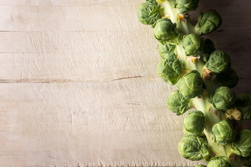 Brussel sprouts on stalk background. Brussel sprouts still on stalk with wooden board background royalty free stock photo