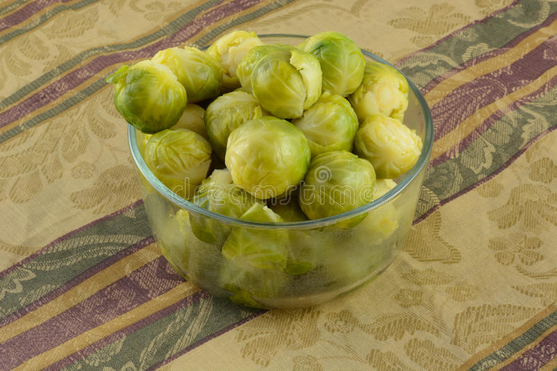 Brussel sprouts. Warm cooked brussel sprouts sin glass bowl on tablecloth royalty free stock image