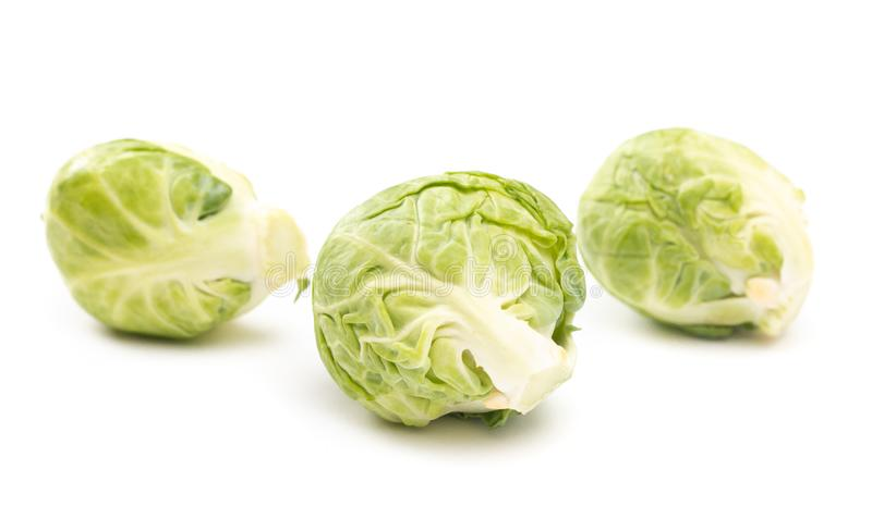 Brussel Sprouts on a White Background stock images