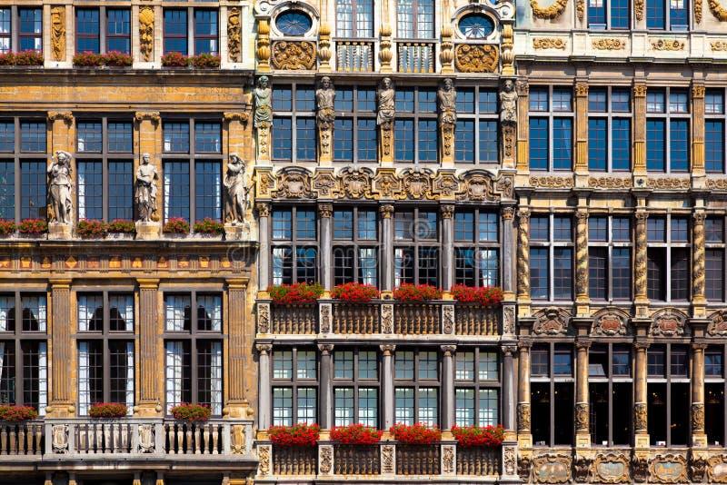 brussels domy obraz royalty free