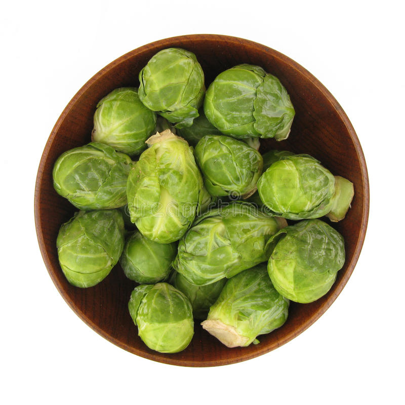 Brussels sprout. The Brussels (or brussels or brussel) sprout (Brassica oleracea Gemmifera Group) of the Brassicaceae family, is a cultivar group of Wild Cabbage royalty free stock photos