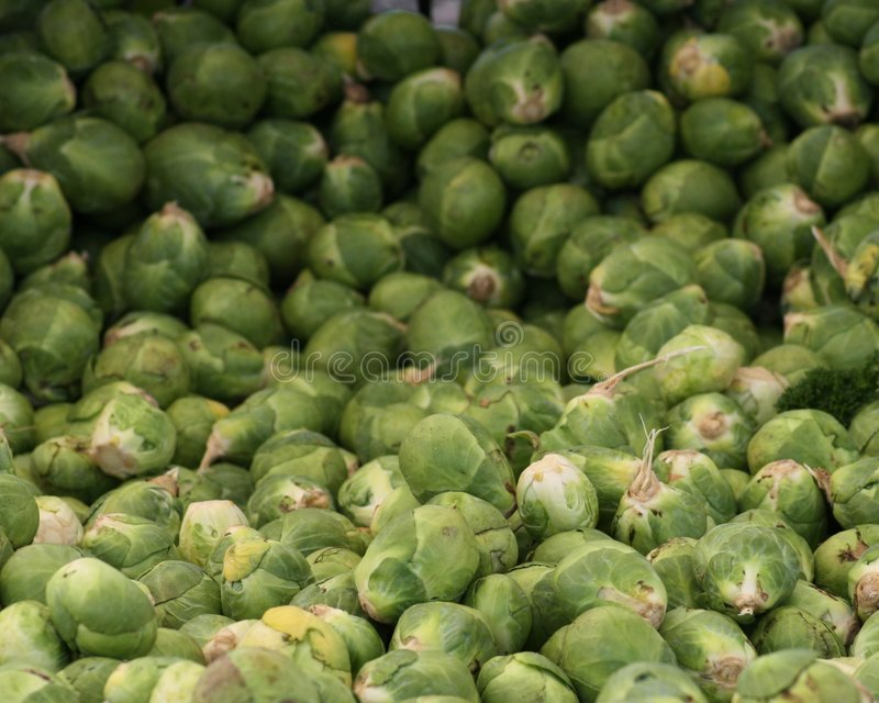 Brussels Sprout Mountain 2 royalty free stock photography