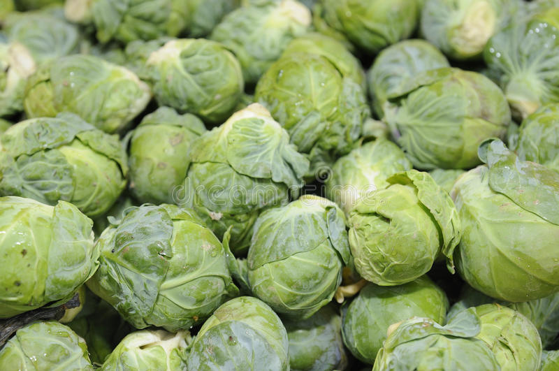 Download Brussels Sprouts Royalty Free Stock Images - Image: 12281819