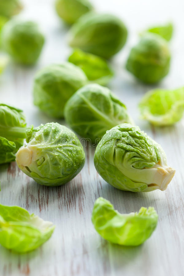 Download Brussels Sprouts stock image. Image of table, closeup - 16681367