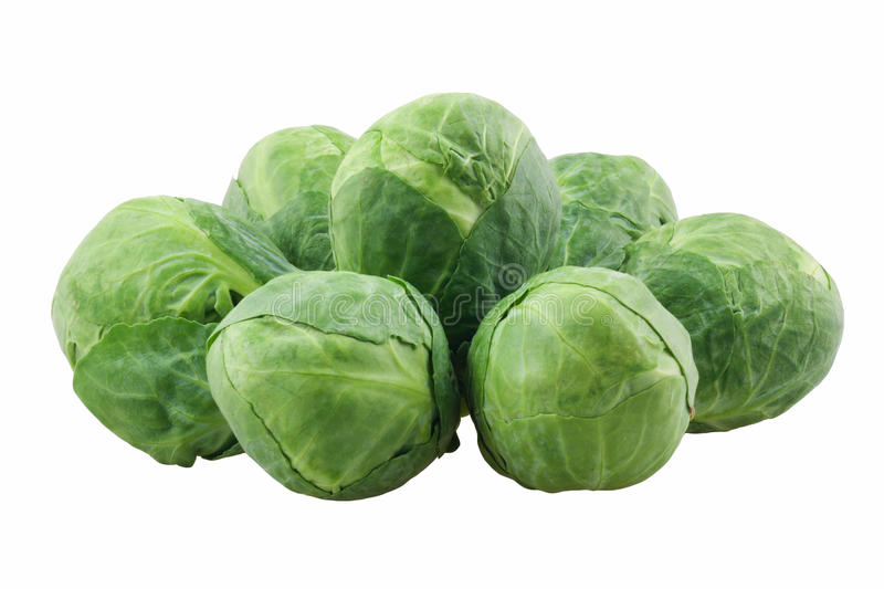 Download Brussels Sprouts Royalty Free Stock Images - Image: 19414269