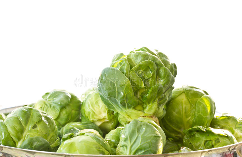 Download Brussels sprouts stock image. Image of nobody, closeup - 22506209