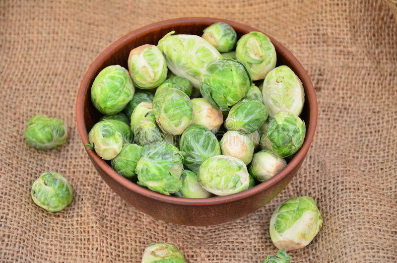 Brussels sprouts in a bowl stock image