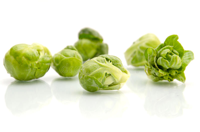 Brussels sprouts cabbage. On white stock image