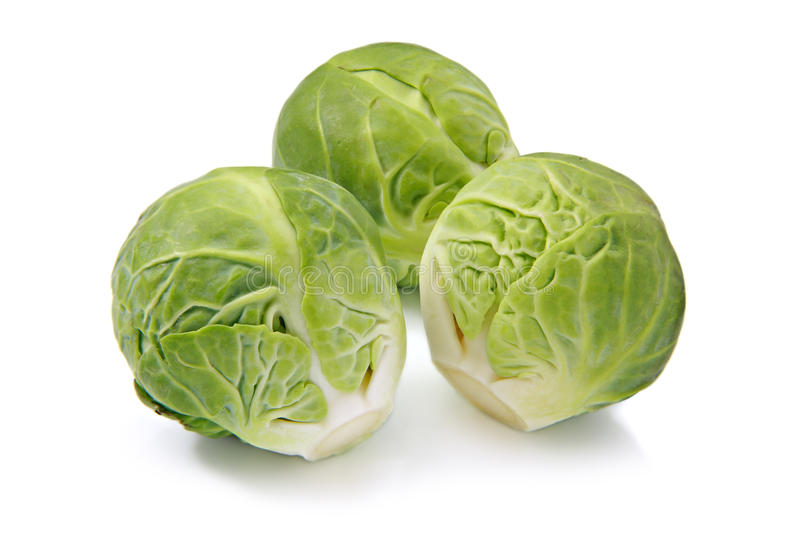 Download Brussels Sprouts, Isolated On A White Background Stock Images - Image: 16951634