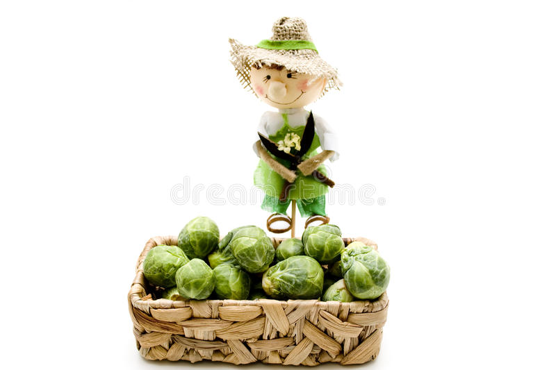 Download Brussels Sprouts With Straw Doll Stock Photo - Image: 23323724