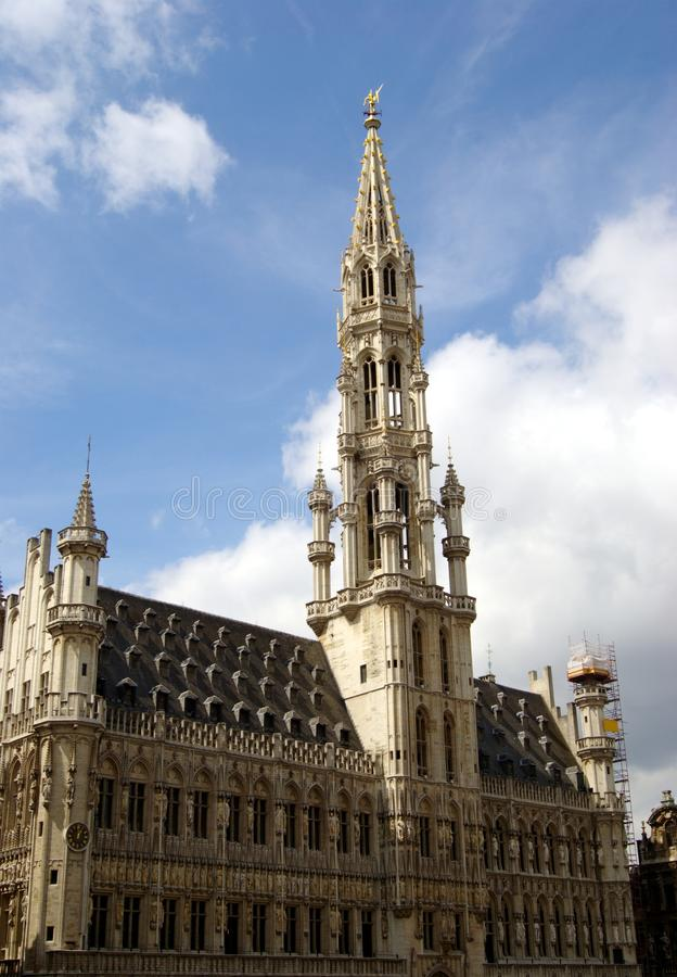 Free Brussels Town Hall, Belgium Royalty Free Stock Photography - 14905067