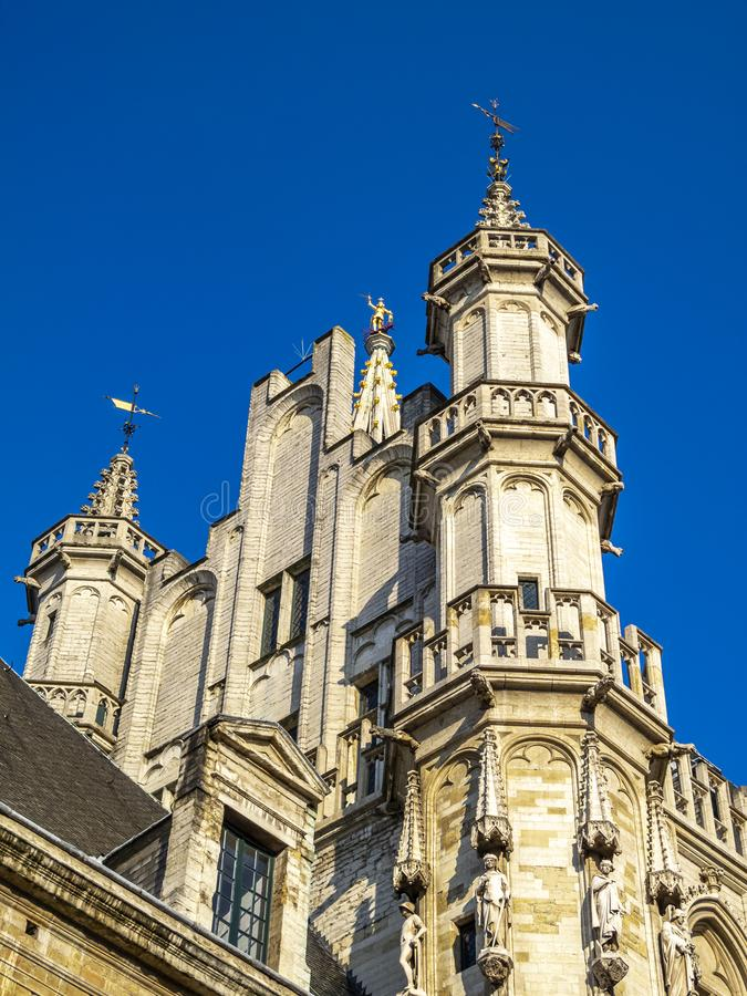 Free Brussels Town Hall Detail Stock Images - 156868274