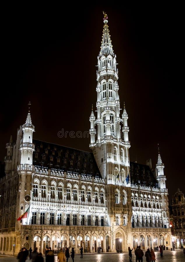 Brusselss stadshus vid natt royaltyfri fotografi
