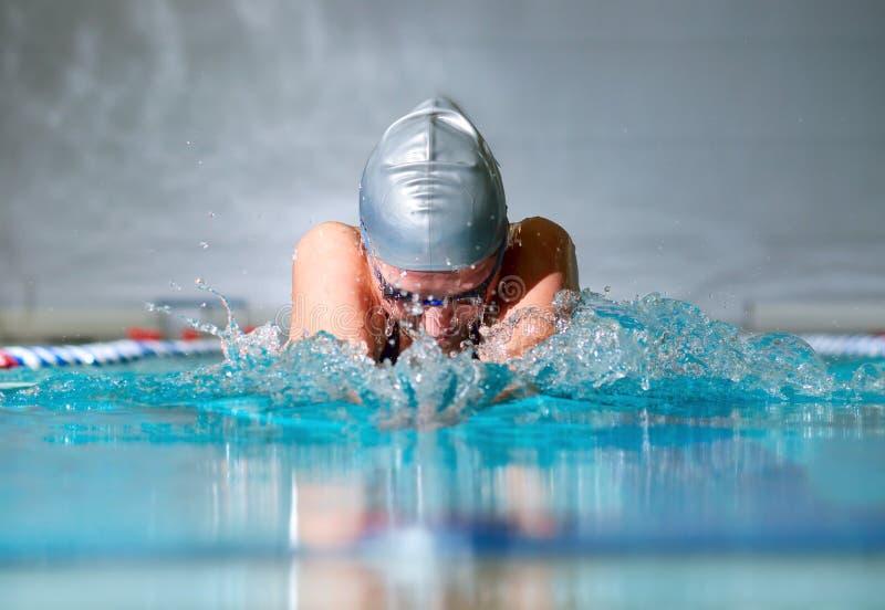 Brustschwimmen stockbild