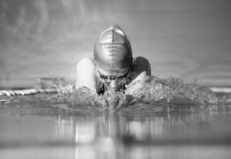 Brustschwimmen lizenzfreie stockbilder