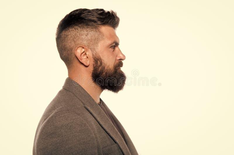 Brutal caucasian hipster med mustaschen fashion manlign isolerade den ansikts- injektionen f?r den h?rliga BOTOX?-omsorgsframsida arkivbild