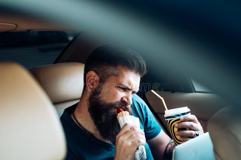 Brutal caucasian hipster with moustache. remote work. coffee time. fast food - hot dog. Male barber care. Mature hipster. With beard. Bearded man. earnings on stock photos