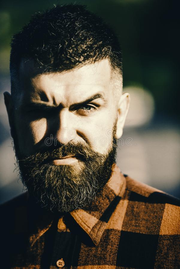 Brutal face. Man with strict face and beard in plaid shirt. Brutal face. Man with strict face and beard in plaid or checkered shirt, lumberjack style, close up royalty free stock photo