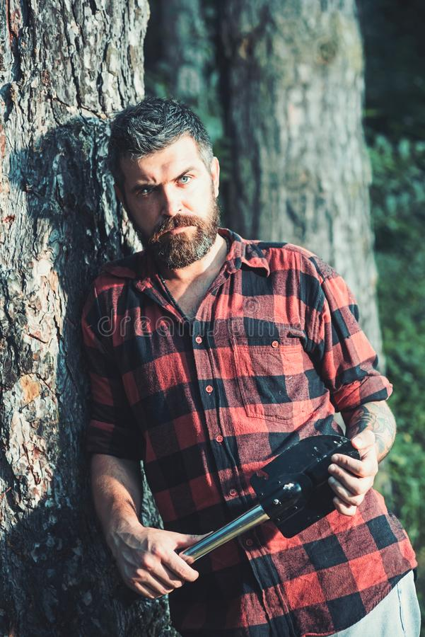 Brutal lumberjack holding small spade and leaning on old tree. Hipster with stylish beard wandering in wilderness. Young. Concentrated scientist working in stock image