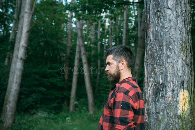 Brutal man with stylish beard and mustache wandering in woods. Side view lumberjack walking around forest. Environment. Nature and leisure activity concept stock photos