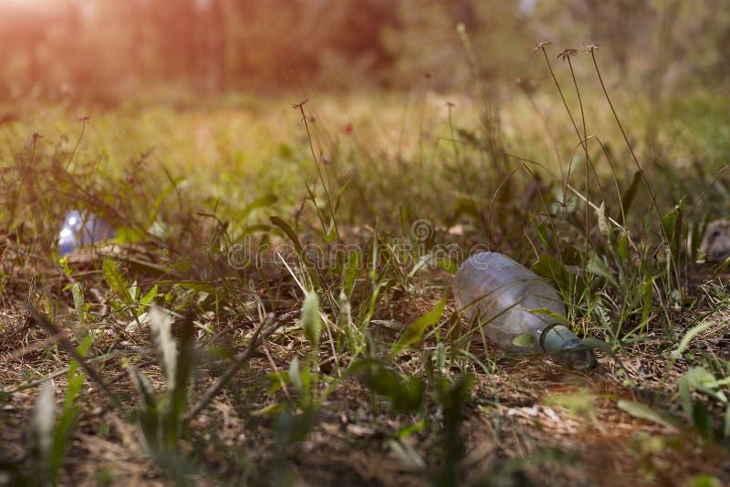 Bruten ölflaska på jordningen i pinjeskogen arkivfoton