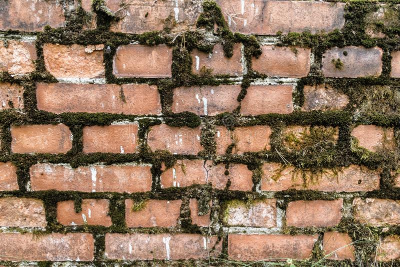 Bruten bakgrund för textur för vägg för röd tegelsten för abstrakt begrepp för bakgrund för tegelstenvägg gammal fotografering för bildbyråer