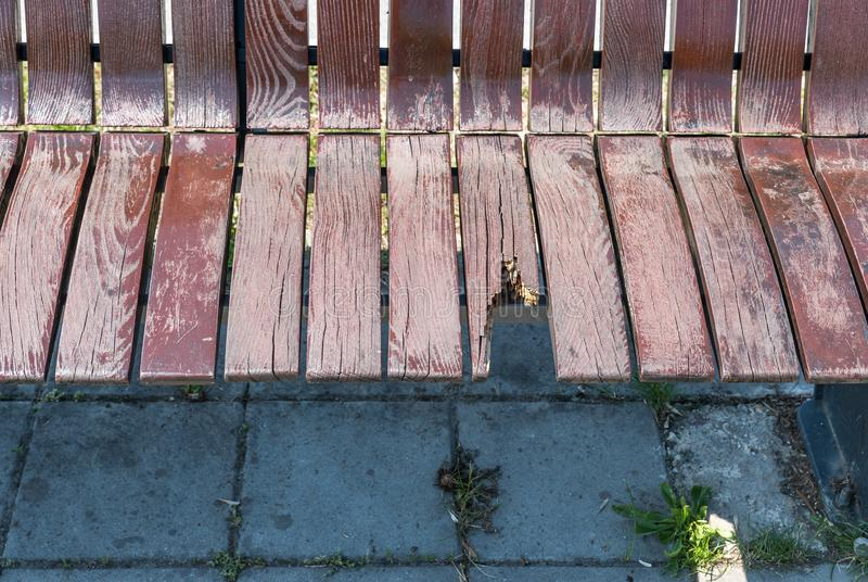 Bruten och skadad tr?b?nk p? gatan, vandalismbegrepp arkivbild