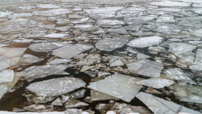 Bruten is på en vinterflod med solnedgånghimmelreflexion arkivfoton