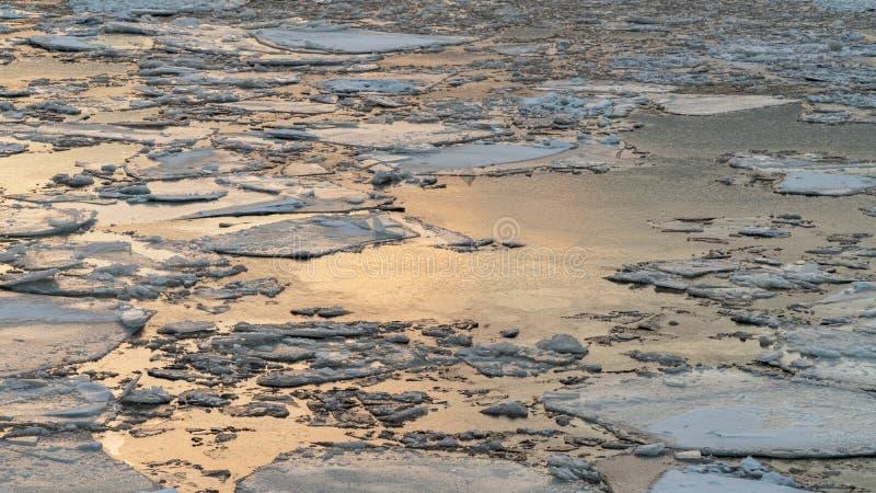 Bruten is på en vinterflod med solnedgånghimmelreflexion royaltyfria bilder