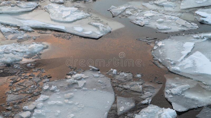 Bruten is på en vinterflod med solnedgånghimmelreflexion royaltyfri foto