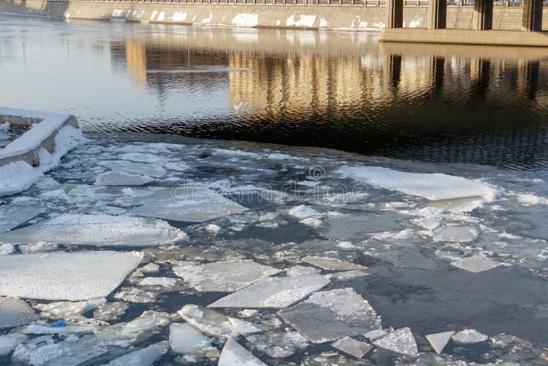 Bruten is på yttersidan av floden på en vårdag royaltyfri bild