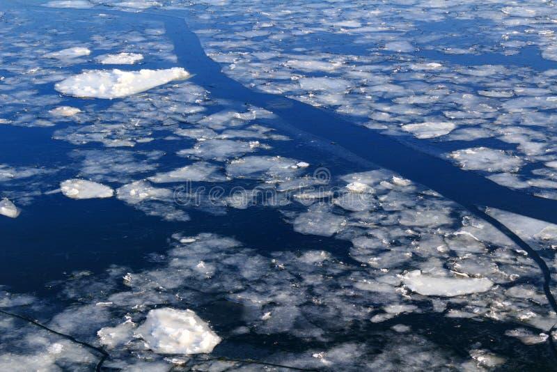 Bruten is på yttersidan av floden i vinter fotografering för bildbyråer