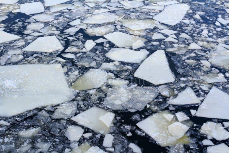 Bruten is på yttersidan av floden i vinter arkivfoton