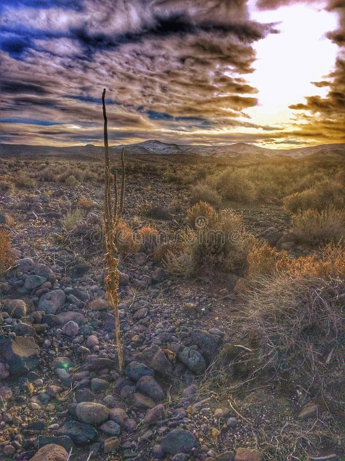 Bruten solnedgång arkivfoton