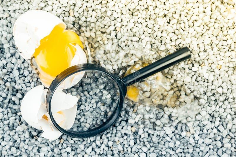 Brutet ägg med förstoringsglaset på grått grus, asfalt royaltyfri fotografi