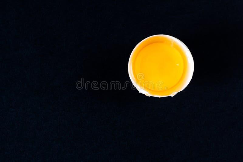 Brutet ägg på en svart bakgrund arkivbild