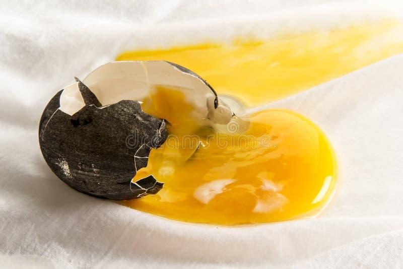 Brutet mörkt ägg royaltyfri fotografi