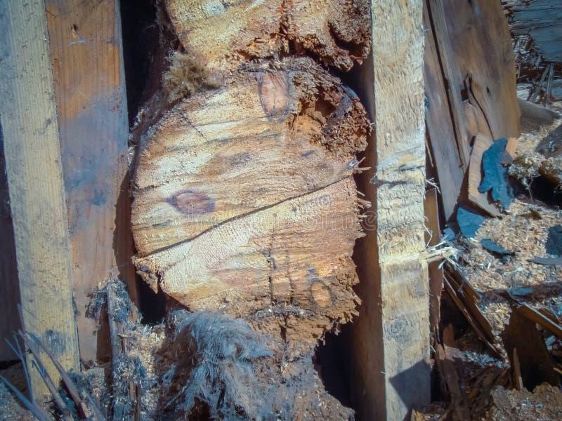 Download Brutet wood hus arkivfoto. Bild av struktur, vägg, grunge - 106830440